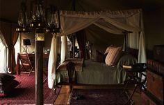 british safari themed room - Google Search