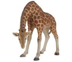 Stooping Giraffe Ornament #Giraffe #Safari #Zoo #Cute