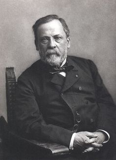 Louis Pasteur (/ˈluːi pæˈstɜr/, French: [lwi pastœʁ]; December 27, 1822 – September 28, 1895) was a French chemist and microbiologist who is well known for his discoveries of the principles of vaccination, microbial fermentation and pasteurization. He is remembered for his remarkable breakthroughs in the causes and preventions of diseases, and his discoveries have saved countless lives ever since.
