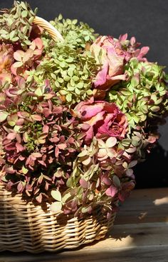 How to Dry and Use Hydrangeas