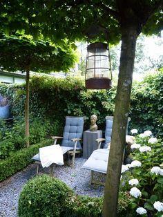 garden corners create evergreen plants seat lounge chairs splitt floor #g ... #chairs #corners #create #evergreen #garden #klainegarten #lounge #plants