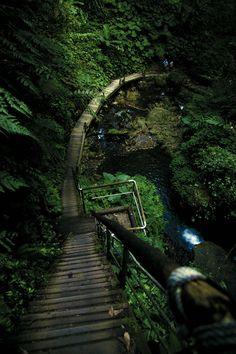 Long Ladder, Taiwan (by Hanson Mao)