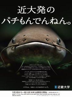 「近畿大学 ポスター」の画像検索結果