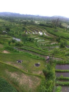 North east Bali This is the real bali