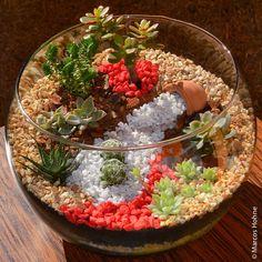 Uma bola de vidro, um vidro redondo ou quadrado são ótimos para fazer um terrário, um mini jardim para decoração de sua casa. Publicidade Veja como fazer um terrário e materiais necessários: Frasco grande de vidro transparente – encontra em lojas de artesanatos ou loja de produtos para laboratório Pedrinhas lisas que são encontradas em …