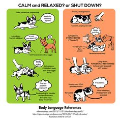 dog-body-language-reference-infographic