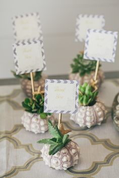 Urchin planter escort cards: http://www.stylemepretty.com/2014/01/09/coastal-glam-pacific-northwest-inspiration-shoot/ | Photography: Love Song Photo - http://lovesongphoto.com/index2.php#!/Home