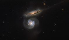 Hubble's Megamaser Galaxy MCG01-38-005 (below) is a special kind of megamaser; the galaxys active galactic nucleus pumps out huge amounts of energy stimulating clouds of surrounding water.
