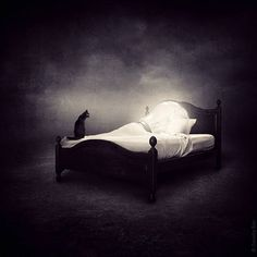 """Made by: Sarolta Ban , """"Light Bulb in bed"""""""