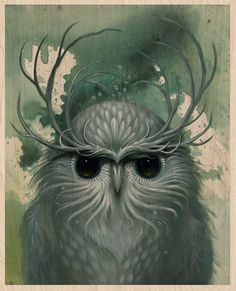"""Jeff Soto and a sorta snow owl""  http://www.tor.com/blogs/2011/12/picturing-winter-a-solstice-celebration"