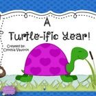 Back to School Classroom Decor Turtle Theme