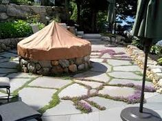 Image result for thyme with paving