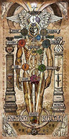 Human Body as replica of the Universe