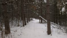 MN Bike Trail Navigator: Bike Trail Picture of the Day - 2/6/13