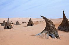 Tuareg village - Sahara dessert