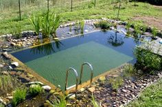 25 Beautifully Natural Pond Swimming Pool Design Ideas 25 Beautifully N Swimming Pool Pond, Natural Swimming Ponds, Natural Pond, Swimming Pool Designs, Natural Garden, Piscina Do Hotel, Small Pools, Pool Landscaping, Backyard Pools