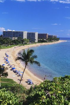 Kaanapali Beach, Hawaii, Maui. Stayed Here. Definite Paradise