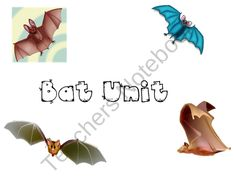 Bat unit to be used with a smartboard product from Wonder-Kinders on TeachersNotebook.com