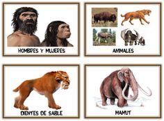 Recursos Infantiles: Proyecto Prehistoria Montessori Materials, Sistema Solar, Stone Age, History Facts, Ancient History, Fossils, Projects For Kids, Social Studies, Celtic
