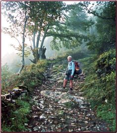 Google Image Result for http://www.travelwithachallenge.com/Images/Travel_Article_Library/Spanish_Walking_Tour/Spain-Camino-de-Santiago/Sarria-Walk.jpg