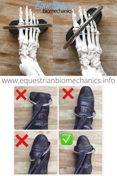 It is the purpose of this article to educate riders on the most stable and effective positioning of the foot in the stirrup according to biomechanics and anatomy. Of course, all individuals are entitled to their opinion and preference. Horseback Riding Tips, Horse Riding Tips, Horse Tips, Horse Age, Horse Information, Horse Therapy, Horse Exercises, Horse Facts, Dressage Horses