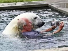 Grizzly man Mark Dumas, is the only man in the world that can swim with a polar bear. The fearless polar bear handler from Abbotsford. Types Of Animals, Animals And Pets, Funny Animals, Cute Animals, Wild Animals, Cute Bear, Big Bear, Selfies, Polar Bear Video
