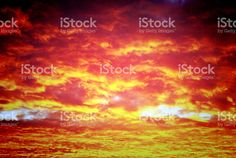 Under the Blood Red Sky. An amazingly red and orange sunset sky image. Sky Images, Sunset Sky, Image Now, Royalty Free Stock Photos, Nature, Photography, Naturaleza, Photograph, Fotografie