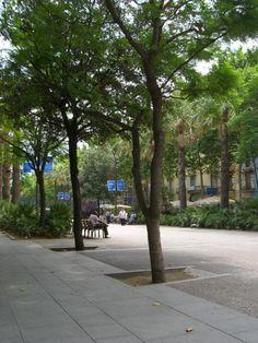 Placa Raval in Barcelona