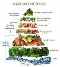 Vegan Diet Food Pyramid
