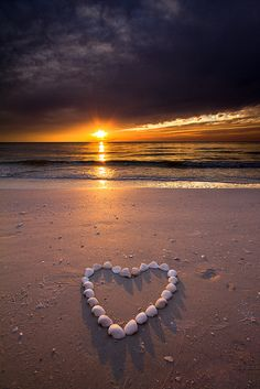 Marco Island Love shells composed in heart on beach with sun setting over the water.