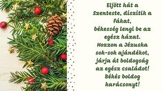 Card Sayings, Pineapple, Bullet Journal, Jar, Fruit, Christmas, Advent, Xmas, Pine Apple