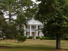 Argyle Plantation 2014 - Sumter County, South Carolina