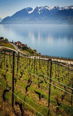 Lake Geneva Switzerland 23.5.18