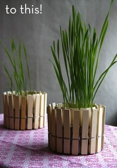 Cute spring or #Easter centerpiece made from empty tuna cans and clothespins! #DIY