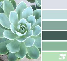 succulent tones by design seeds. Colour Schemes, Color Patterns, Color Combos, Colour Palettes, Monochromatic Color Scheme, Design Seeds, Palette Verte, Pantone, Cactus E Suculentas