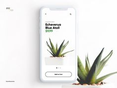 E-Commerce Shop (Single Item) 100 Day Challenge, Web Ui Design, Ui Design Inspiration, User Interface Design, E Commerce, Planting Succulents, Mobile App, The 100, Shopping