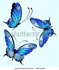 http://www.shutterstock.com/pic-33611386/stock-vector-beautiful-butterfly.html