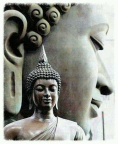 "//""Anything that contradicts experience and logic should be abandoned. the Dalai Lama . Lotus Buddha, Art Buddha, Buddha Kunst, Buddha Zen, Gautama Buddha, Buddha Buddhism, Buddhist Art, Image Positive, Meditation Music"