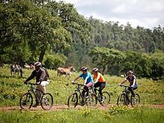 Mountain Biking. Eswatini Adventure Activities | Things to do in Eswatini | Experiences | Swaziland - Dirty Boots