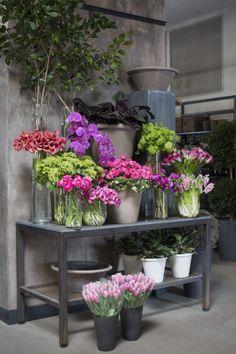 Valentine selects at Winston Florist, Gardenista ❥ڿڰۣ-- […] ●♆●❁ڿڰۣ❁ ஜℓvஜ ♡❃∘✤ ॐ♥..⭐..▾๑ ♡༺✿ ☾♡·✳︎· ❀‿ ❀♥❃.~*~. TH 4th FAB 2016!!!.~*~.❃∘❃ ✤ॐ ❦♥..⭐.♢∘❃♦♡❊** Have a Nice Day!**❊ღ ༺✿♡^^❥•*`*•❥ ♥♫ La-la-la Bonne vie ♪ ♥ ᘡlvᘡ❁ڿڰۣ❁●♆●