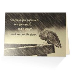 When it is difficult to come up with just the right words, our biblical greeting cards say it all. Based on Psalm 57:1  Bow your hear, say a prayer, and weather the storm