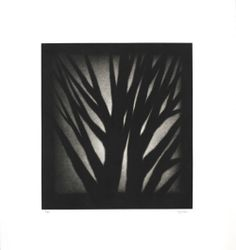 Robert Kipniss: Shadow Show (2001) -Purchased from Park West Gallery