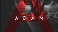 Font of the day: Adam | Typography | Creative Bloq
