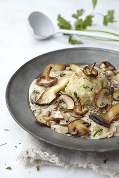 German/Austrian bread dumplings (semmelknoedel) with mushroom sauce
