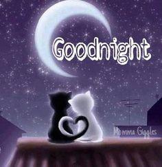 Gute Nacht mein süßer Schatz, ich wünsche dir eine entspannte Nachtruhe und wundervolle Träume, damit du morgen glücklich und zufrieden aufwachen kannst und fröhlich in den neuen Tag startest... ich liebe dich mein Hase <3 <3 <3