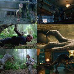 The Raptor kings💙🖤Who's your favourite? Jurassic Park Series, Jurassic Park World, Big Cats Art, Dinosaur Illustration, Jurassic World Dinosaurs, Jurassic World Fallen Kingdom, Tiger Art, Falling Kingdoms, Dinosaur Art