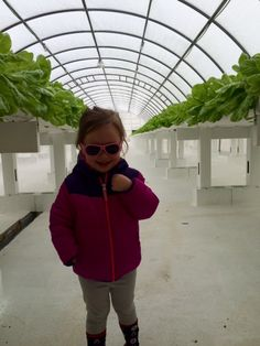 Children love to visit Laura Lee Farms. Its almost like they are at #disneyland. #familybuisness #futureowner  Facebook: https://www.facebook.com/photo.php?fbid=333576040186005