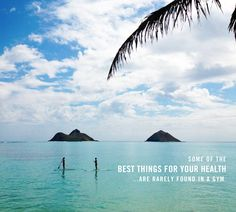 Some of the best things for your health…are rarely found in a gym. A surfboard, a kayak, a paddle board, an outrigger, a mask and fins... http://blog.swell.com/SWELLivin-1003 #quote
