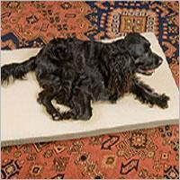 Snoozer Pet Products Rectangular Crate Mat with Cedar/Poly Filling Pet Dogs, Dogs And Puppies, Pets, Heated Dog Bed, Akbash Dog, Dog Crate Mats, Dog Cots, Outdoor Dog Bed, Dog House Plans