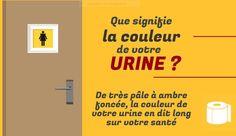 Les urines sont normalement limpides, stériles et de couleur jaune clair. Cet aspect habituel peut varier en fonction de différentes circonstances. On vous apprend à reconnaître les différentes couleurs.
